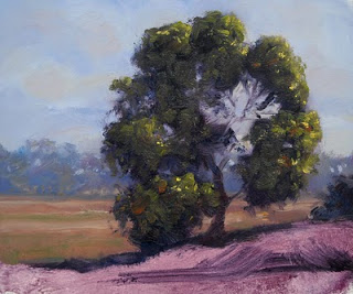painting in oil plein air australian landscape tutorial andy dolphin
