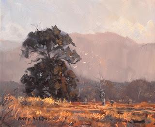 australian plein air landscape painting at sunset