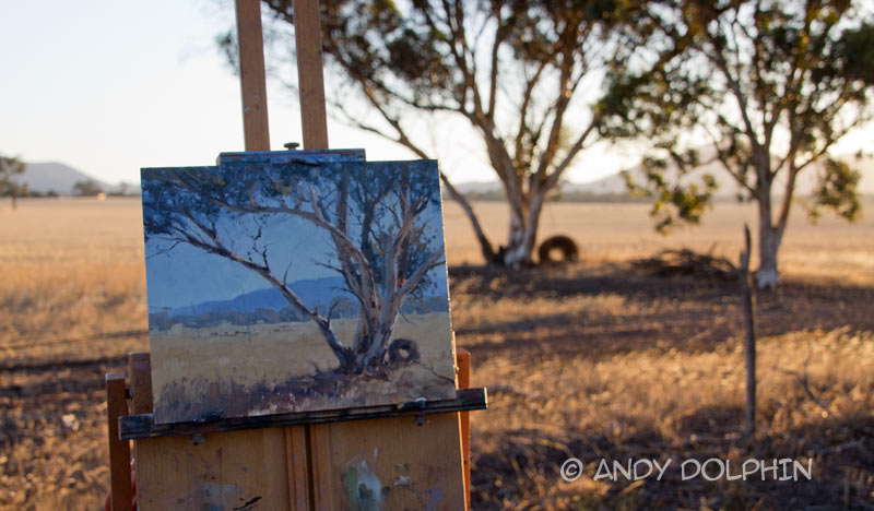 plein air oil painting lof tree - ocation photo in rural western australia
