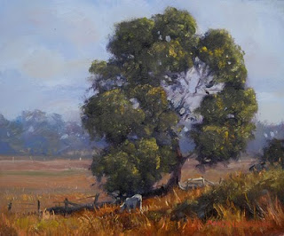 painting in oil plein air australian landscape andy dolphin